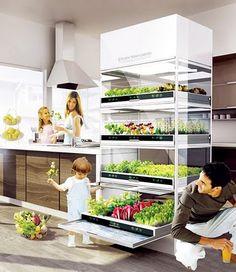 Coltiva a casa tua, le tue piante, altro che km zero, questo è veramente metri zero! Molto interessante!!