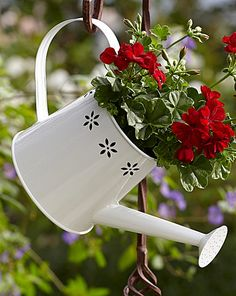 Hanging White Flower Watering Can with Red Geraniums Planter | Home Essentials