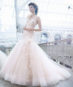 Silk Organza Colored Wedding Dresses, I'd like it better without the flowers going down across it