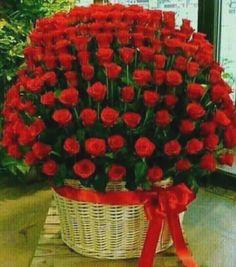 Happy Anniversary tabassum and Amjad Beautiful Rose Flowers, Flowers Gif, Beautiful Flowers Wallpapers, Beautiful Flower Arrangements, Love Rose, My Flower, Pretty Flowers, Floral Arrangements, Types Of Flowers