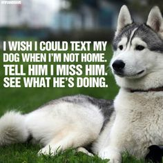 """Lol Canela would text us every hour on the hour """"I miss you. Come home""""."""