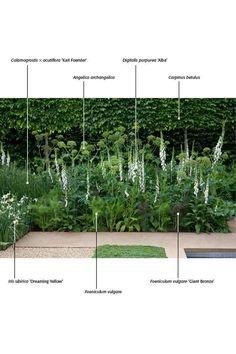 Witte border. Voorzijde tuin bij erker. Schaduwkant.