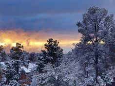 Payson, AZ. I look out my window and often see this in winter. Not all of Arizona is warm year-round!  Love is Ageless http://www.susanhaught.com
