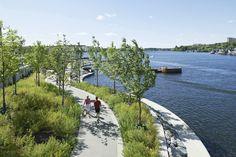 Hornsbergs Strandpark (looks like Olympia's EastBay trail)