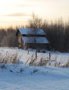 Winter walk around Selkie, North Karelia, Finland | Flickr - Photo Sharing!
