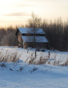 snowy cabin.