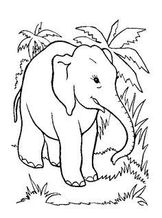 Dieren Kleurplaten voor kinderen. Kleurplaat en afdrukken tekenen nº 82