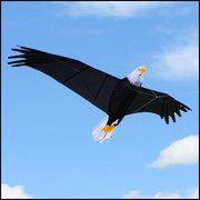 Giant Bald Eagle Kite