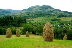 maramures peisaje - Căutare Google Romania, Golf Courses, Travel Ideas, Google, Green, Vacation Ideas