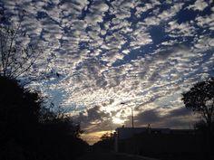 Morning sky.... . . . #merida #yucatan #mexico #adventureFoodBeer #world_photography_club #natgeo #lonelyplanet #worldnomads #thisisadventure #travel #explore #natgeotravel #nakedplanet #travelgram #travel #traveler #photooftheday #visitmexico #igers #igersmexico #mexico_maravilloso #mexicodesconocido #viajeromd #viajeroexpertomd #mexico_greatshots #NatGeoMx #fiercetravels #wonderful_places #bestplacestogo #sunrise
