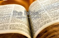 "Bible  ""All scripture is given by inspiration of God, and is profitable for doctrine, for reproof, for correction, for instruction in righteousness; "" 2 Timothy 3:16"
