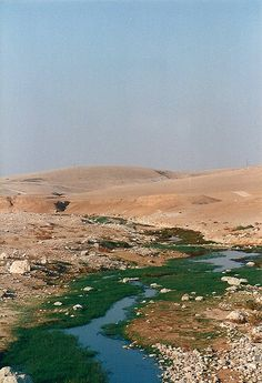 Water in the The Negev