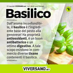 Basil, digestive and antioxidant: properties, benefits, us … – Wall Pictures Herb Meanings, In Natura, Pesto, A Table, Did You Know, Basil, Natural Remedies, Herbalism, Berries