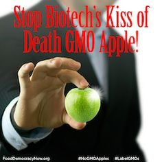 PETITION: tell the USDA to stop Biotech's new Kiss of Death GMO Apple! Don't let gene-silencing silence your genes!