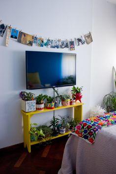 fotos colgadas y plantas