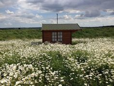 Daisyfield Retreat in Seasalter, Kent, UK. Contributed by Sonja...