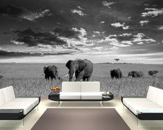"Bilderdepot24 Fototapete Photo Wallpaper mural ""herd of elephants - black white"" 155x100 cm - Made in Germany! Wall sticker: Amazon.co.uk: D..."