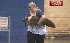 An extraordinary rescue operation unfolded in Gympie this week when a local woman discovered a lungfish stranded in a flooded hotel car park.     Act of human kindness captured  Sasha Ambrose gently carrying the rare Queensland freshwater fish to deeper water.    This is one tiny glimpse into an epic story of survival. Lungfish are among the longest surviving vertebrate species on the planet — they swam in ancient streams alongside dinosaurs, millions of years before humans walked the…
