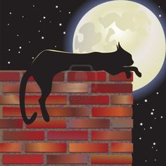 Black cat, full moon.Great new arrived .Hot cheap jerseys are here : hotjerseysstore.com;and the wonderful cheap shoes : best2013sneakers.com