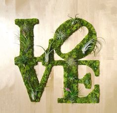 Creating Graffiti Moss Art is quite popular nowadays. Art We Heart makes unique wall art using plants and moss. Moss Wall Art, Moss Art, Diy Crafts For Teens, Diy Craft Projects, Graffiti En Mousse, Garden Wall Art, Walled Garden, Deco Originale, Creation Deco