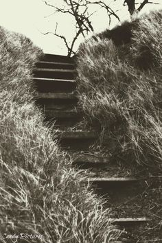 Stairways To Heaven by Candy Pictures on 500px