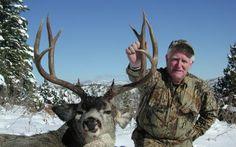 Utah Trophy Deer Rut Hunt
