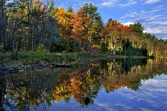 Fall Reflections Landscape by Christina Rollo