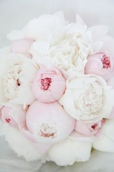 fluffy pink + white peonies
