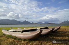 catamaran against the beautiful skylines @ the Amaya Lake, Dambulla