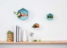 George & Co Hexagon Wall Planters Hexagon Wall Shelf, Small Wall Shelf, Wall Hanging Shelves, Wooden Floating Shelves, Floating Shelves Kitchen, Wood Shelves, Corner Wall, Corner Shelves, 3d Pyramid