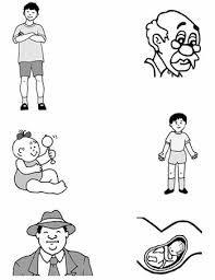etapas del desarrollo humano y sus caracteristicas - Buscar con Google