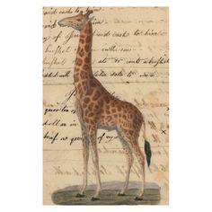 John Derian Company Inc — Giraffe
