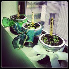 Being a Homemaker: Mason Jar Herb Garden