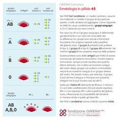 Ematologia in pillole #5: Gruppi Sanguigni  Fondazione GIMEMA Onlus