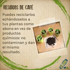 #Ecotip #ThinkGreen #PasosAzules #Tip #TipAzul