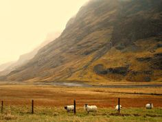 Glencoe Scotland in View Autumn
