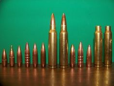 The Firearms Survival Guide - Ammo Independence