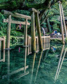 御手洗(みたらし)池。 1日に40万リットル以上の湧水があり、神話の時代に一晩で湧き、以来、干ばつがあっても枯れたことが無いという奇跡の池として伝説がある癒しや清めのパワースポットです。 Beautiful Places In Japan, Beautiful Places To Visit, Beautiful World, Japanese Landscape, Japanese Architecture, Places To Travel, Places To Go, Aesthetic Japan, Anime Scenery