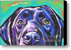 The Look Of Lab Stretched Canvas Print / Canvas Art By Lea