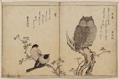 сад япония гравюра - Google Search