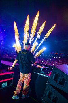 Lollapalooza, Coachella, Ultra Music, Edm Music, Electronic Music, Snake, Dj, Concert, Music