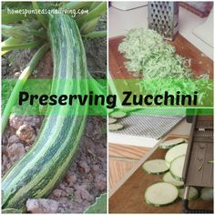 Preserve that ever productive zucchini for winter with these easy methods.