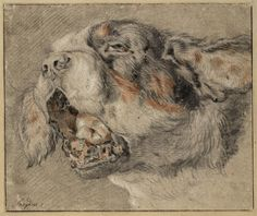 Dog by Frans Snyders Collection Teylers Museum Animal Sketches, Dog Portraits, Dog Art, Pencil Drawings, Art History, Painting & Drawing, Printmaking, Renaissance, Moose Art