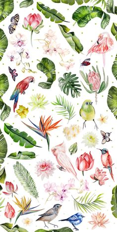 Hand Drawn watercolor TROPICS 2 A wonderful collection of beautiful tropical birds, flowers and leaves watercolor for your design. Parrots, flamingo, flowers of lotus and… Tropical Flowers, Tropical Birds, Exotic Birds, Colorful Birds, Tropical Design, Tropical Art, Tropical Leaves, Purple Flowers, Watercolor Design