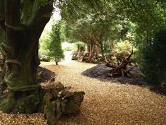 New stumpery at Ickworth House, Suffolk, UK