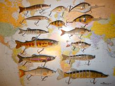 At Predatorfish we offer a wide range of Predator lures, Fishing baits, Fishing Lures of shapes and sizes find the prefect pike lure. Pike Fishing, Fishing Bait, Predator, Painting, Painting Art, Paintings, Painted Canvas, Drawings