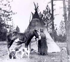 18 new Pins for your Native American Issues board Native American Horses, Native American Wisdom, Native American Pictures, Native American Women, Native American History, American Life, Native Indian, Spokane Tribe, Indian Teepee