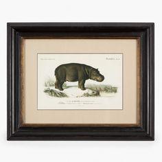 FRAMED HIPPO PRINT