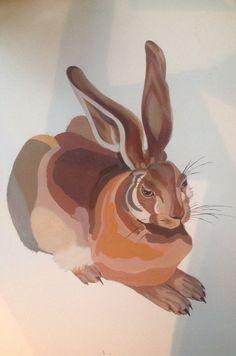 Estudo coelho Dürer
