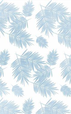 Palm iPhone Wallpaper